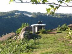 site de la roche allassac tourisme vue